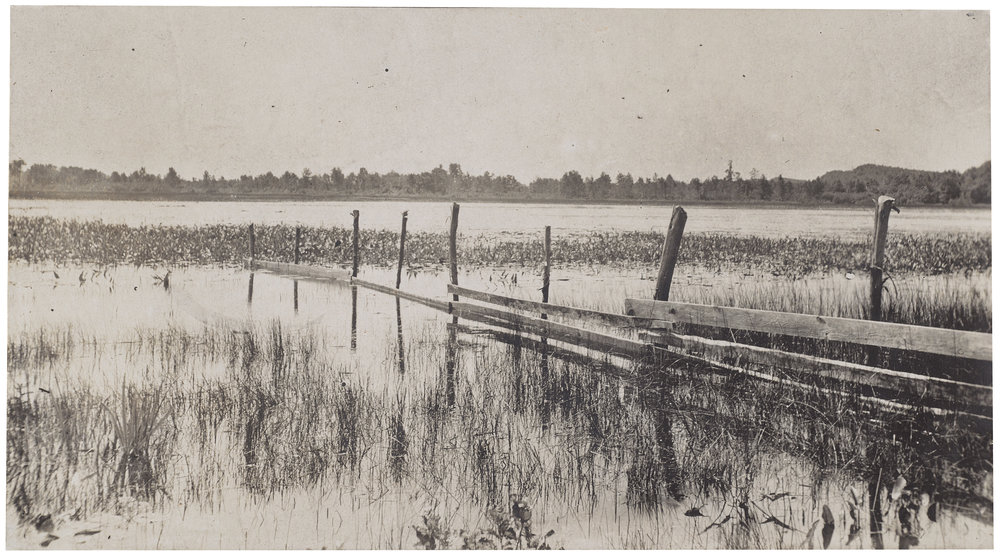 Grand mere, The Lane Collection, Photograph © Museum of Fine Arts, Boston