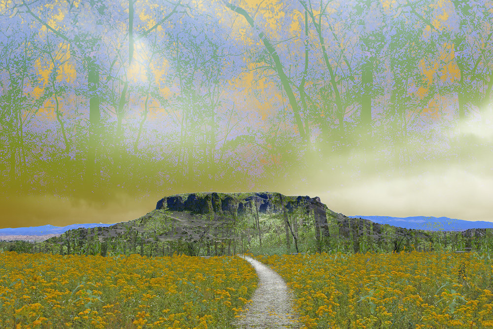 Through the Flowers to Black Mesa.jpg