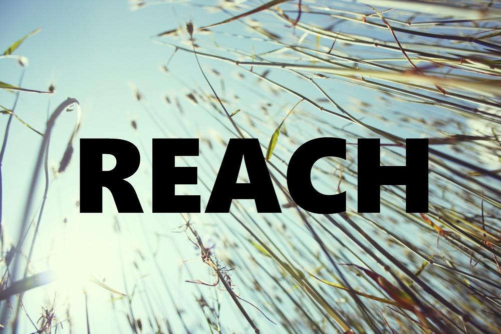 reach2.jpg