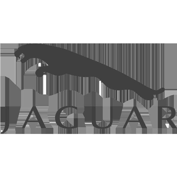 Jaguar.png