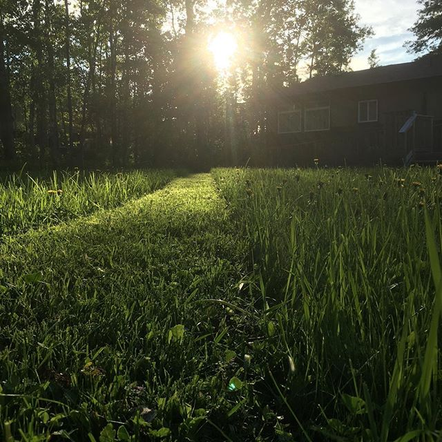 Grass, grass and more grass. Enjoy your fresh cut grass every weekend with our weekly lawn cutting. #falconlake #westhawk #whiteshell #lawncare