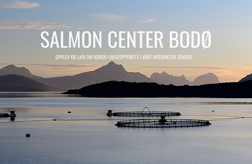 salmon center.jpg