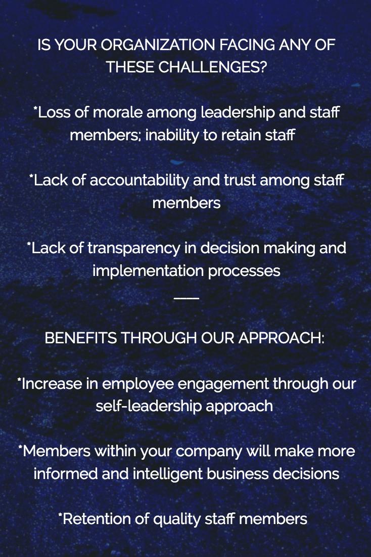 Leadership Diversity and Inclusion Washington DC.png