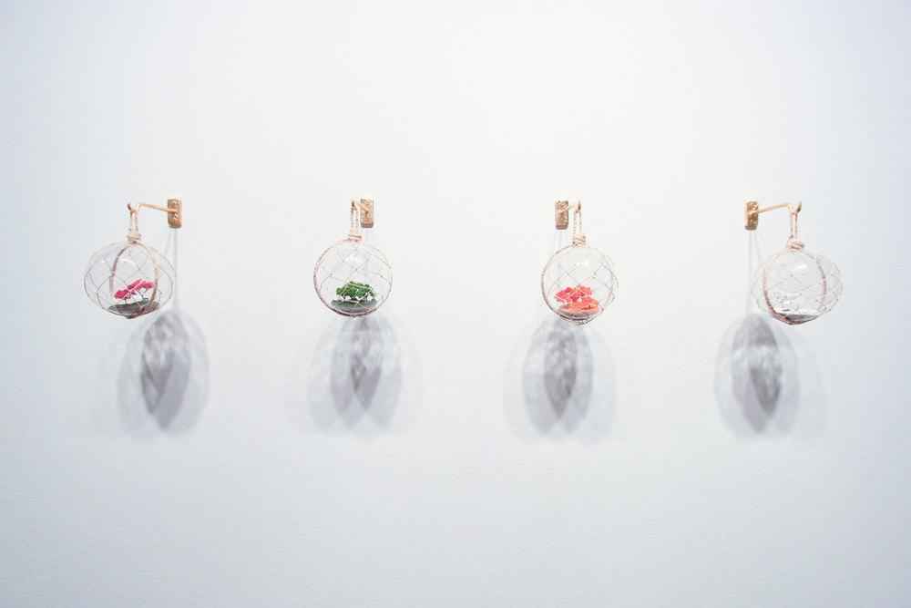 Japanese Float Series