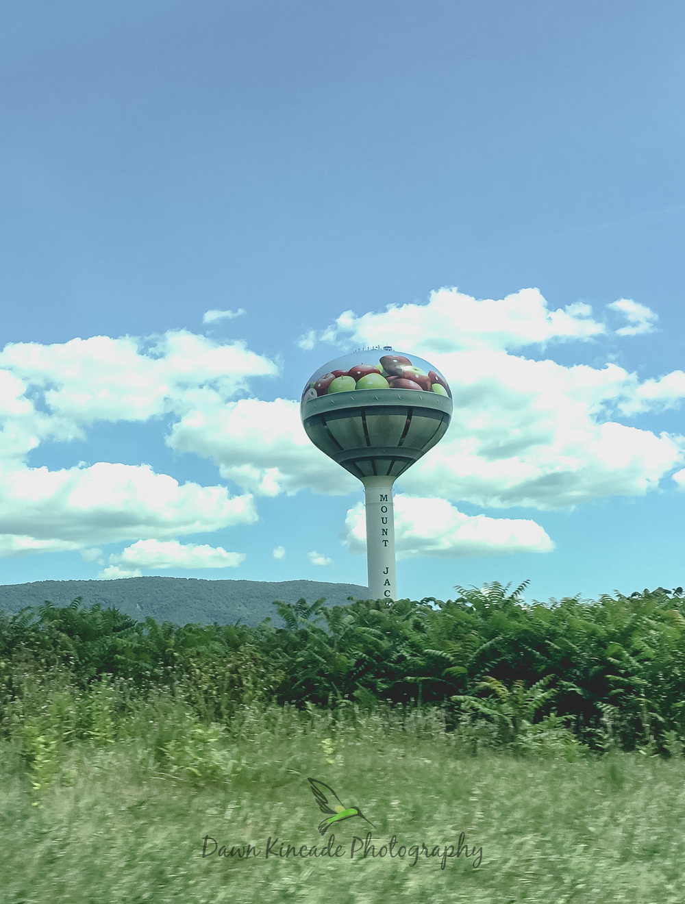 One of the many places along Interstate 81 where apples are a big Fall crop.
