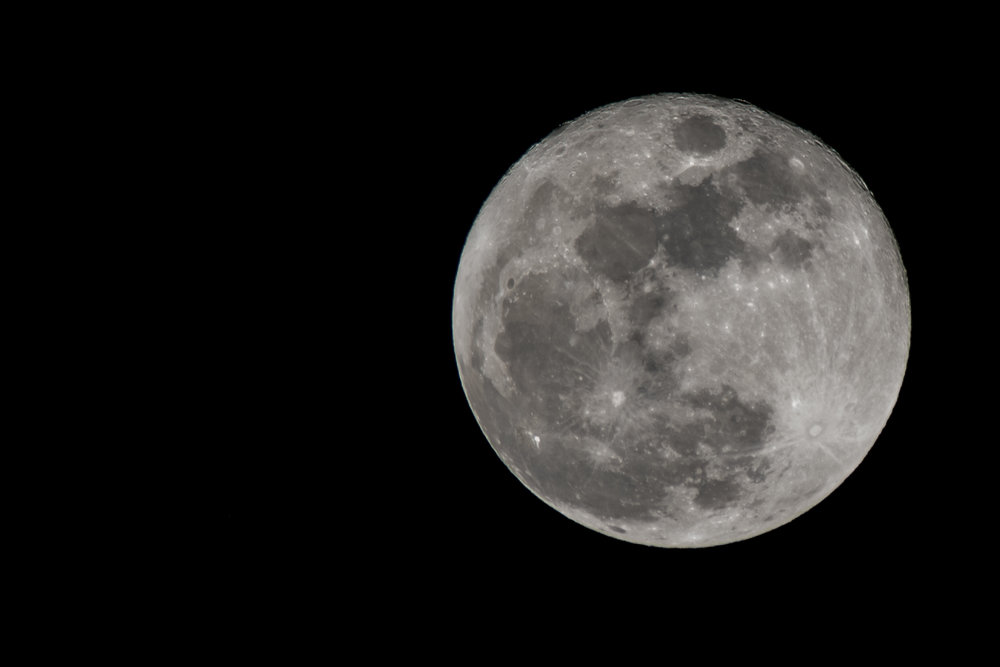 the wolf moon-7.jpg