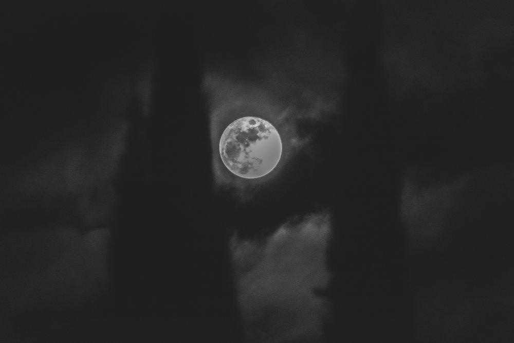 the wolf moon-6.jpg
