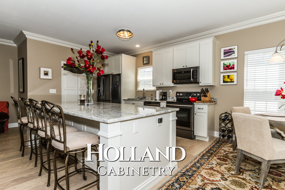 Holland-Cabinetry-Kitchen-Cabinets-3.jpg