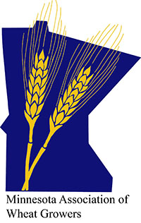 MN Wheat