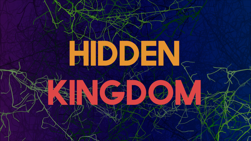 Hidden Kingdom Final.00_00_14_03.Still002.png