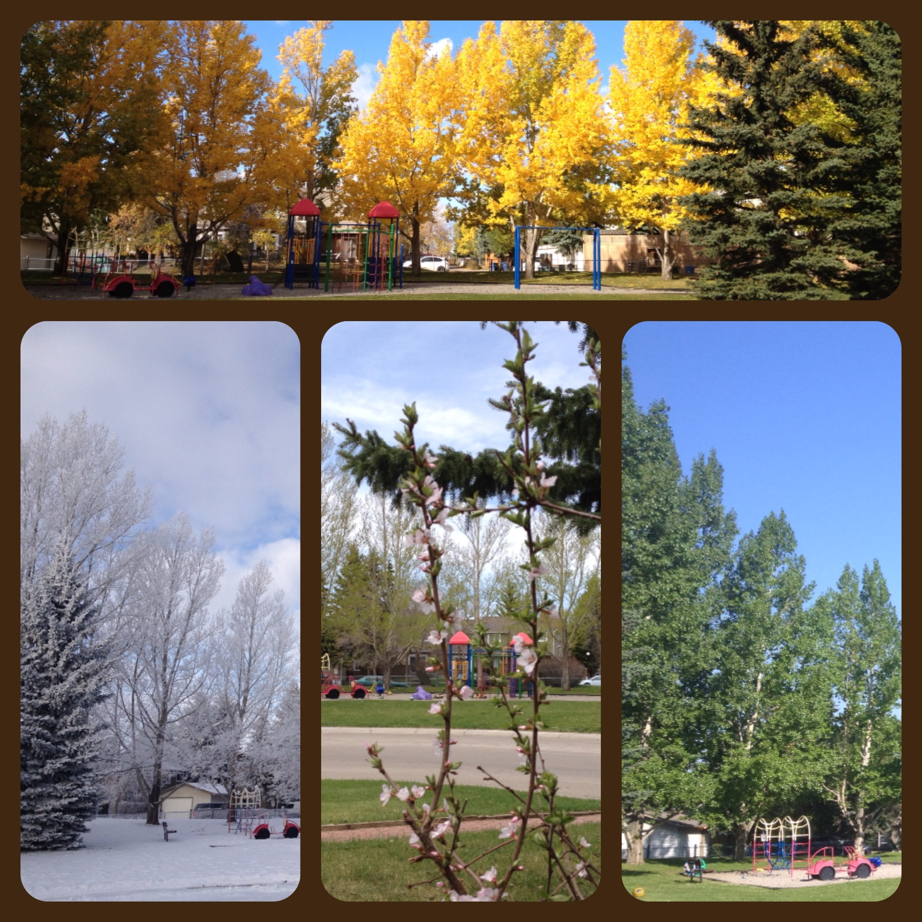 The Four Seasons - Calgary 2013-2014