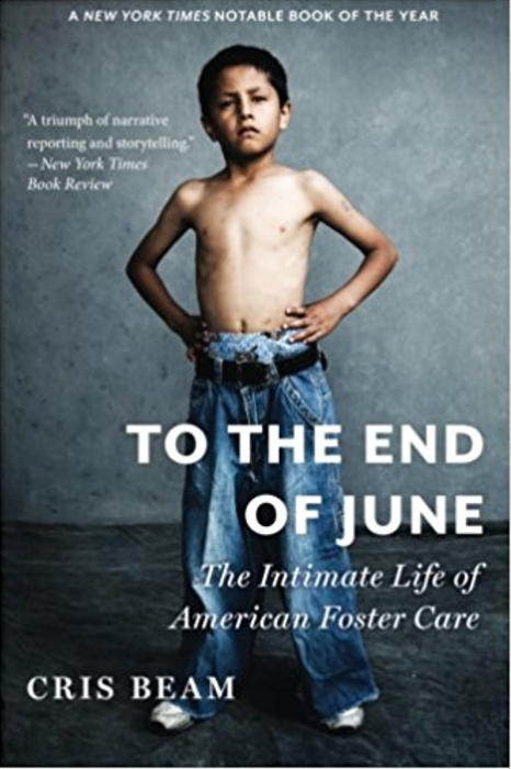 To the End of June: The Intimate Life of American Foster Care  by Cris Beam   Foster Care