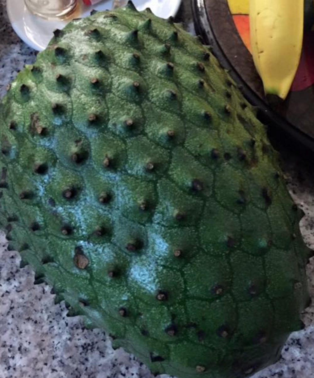 Guanabana (soursop), fabelled and studied for its anti-cancer properties. https://www.ncbi.nlm.nih.gov/pubmed/23889049