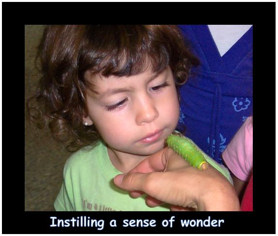 instilling a sense of wonder.PNG