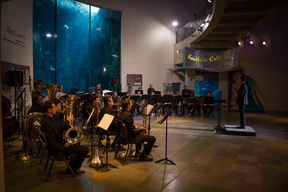 TBC Aquarium.jpg