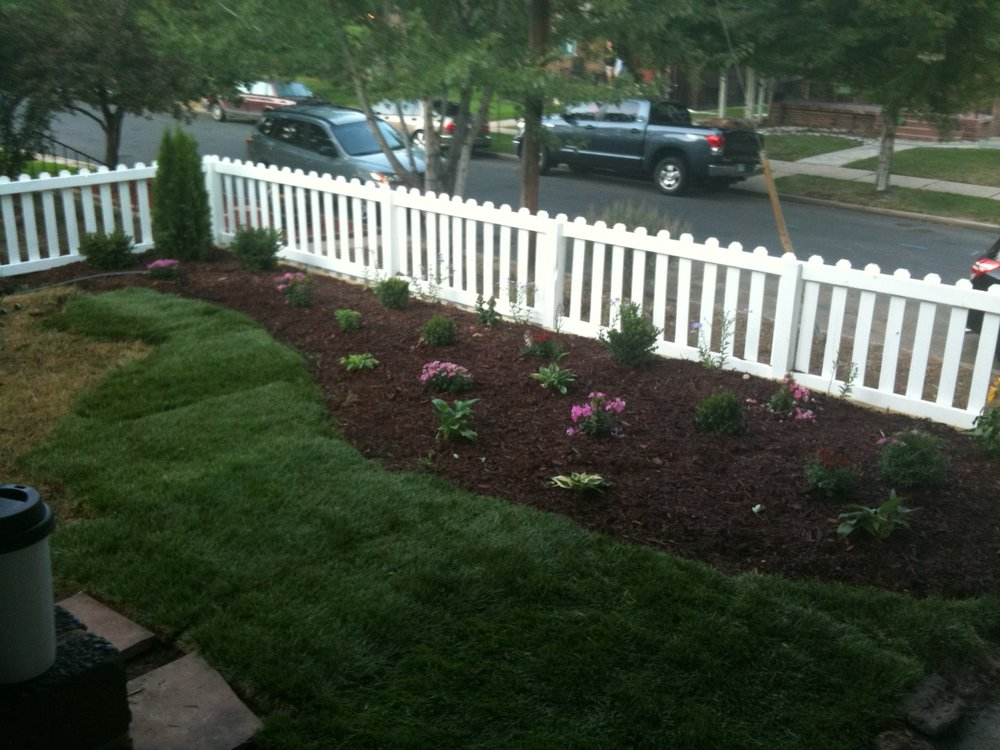 Newly defined flower beds