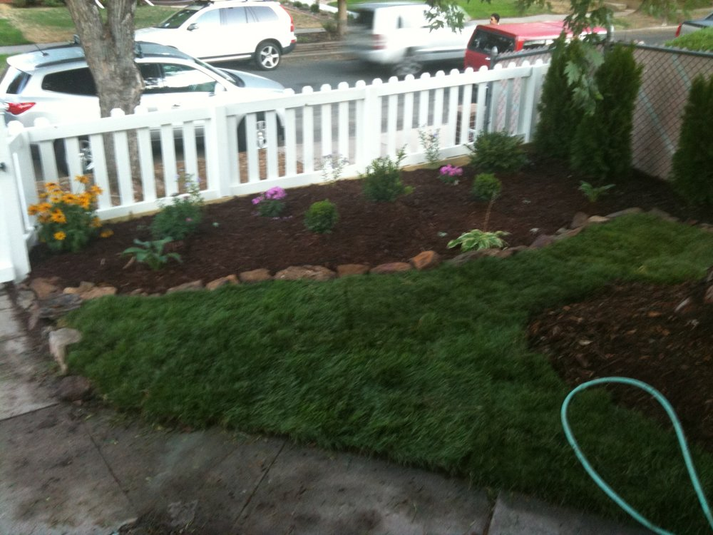 Freshly planted front flower bed