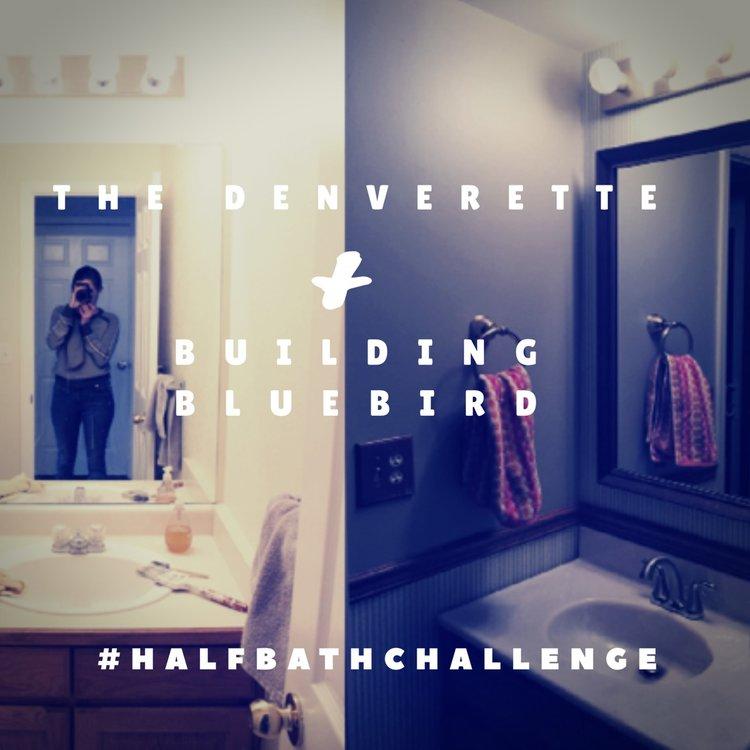 Half Bath Challenge   Building Bluebird