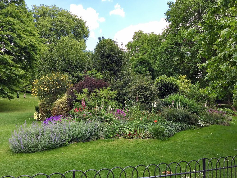 This reminded me so much of my friend Jan's beautiful English garden back in CO. This was in St. James Park.