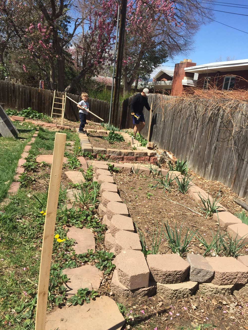 Vegetable Garden — Building Bluebird