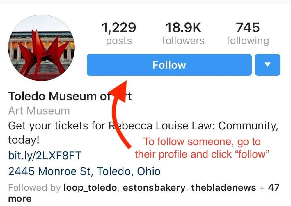 Instagram 101: Following accounts