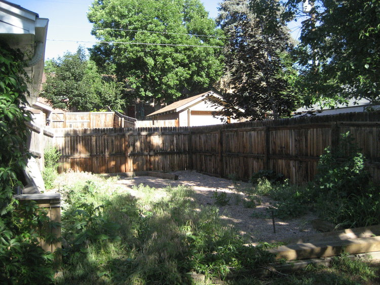 The backyard next to the garage was filled with weeds and gravel when we moved in