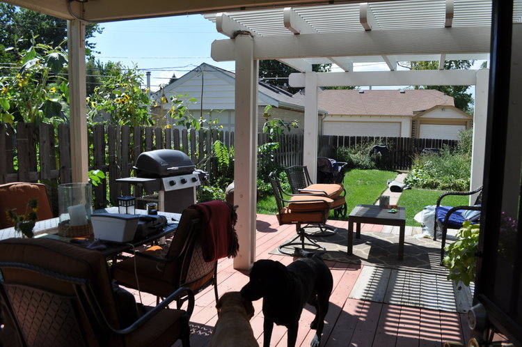 The backyard was a mess! The deck was falling apart and had multiple types of decking on the platform.