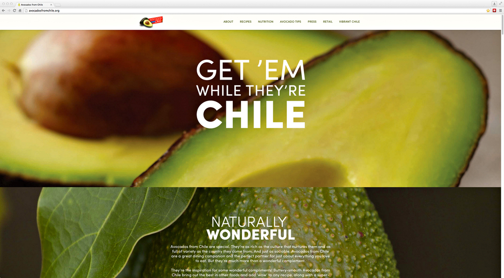 Chilean avocado website splash page