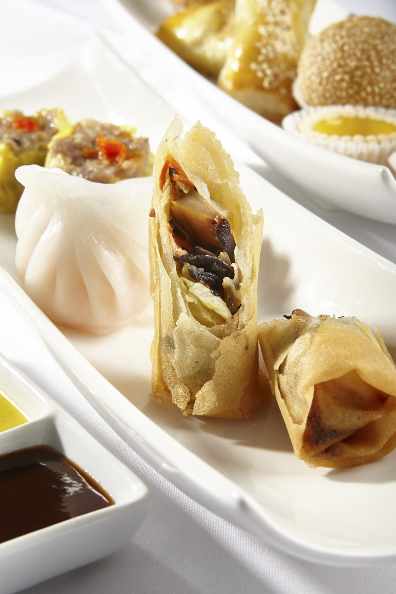 Chinese springroll and dumpling