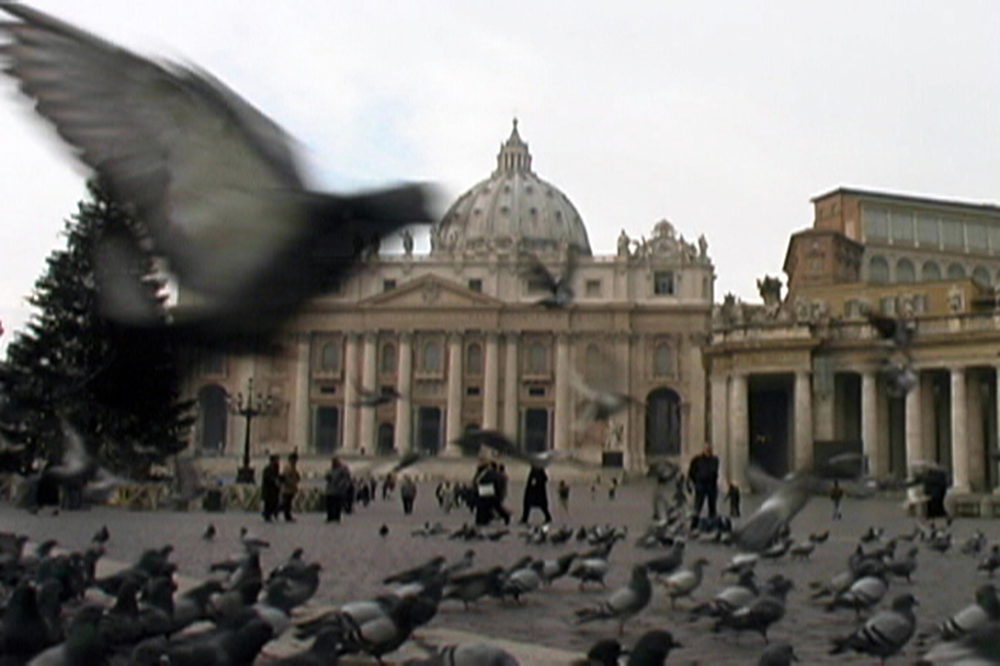 Birds in St. Peter's Square