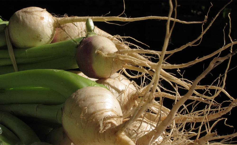 Vegetables_4601.jpg