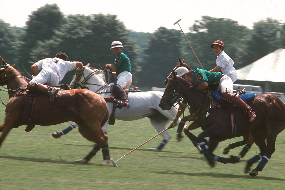 Polo-action-over.jpg