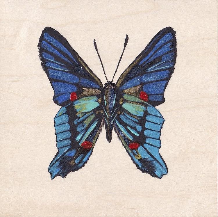 Blue butterfly_Fotor.jpg