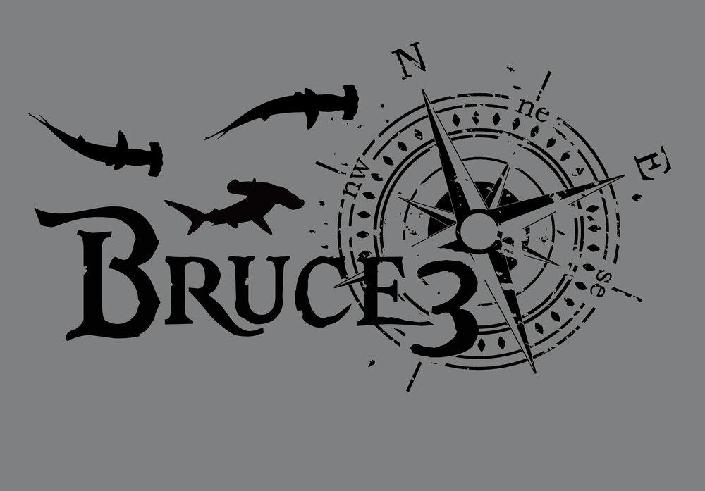 bruce3shirt.jpg