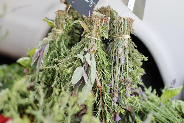 Little Italy's Farmer's Market - Herbs