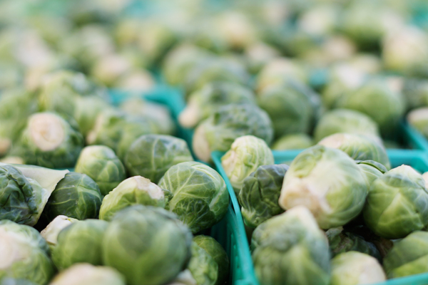 Little Italy's Farmer's Market - Sprouts