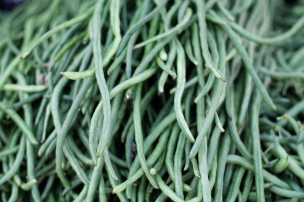 Little Italy's Farmer's Market - Long Beans