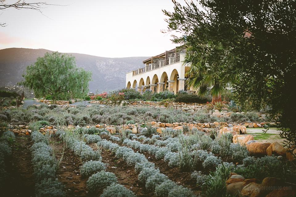 La Villa del Valle, Valle de Guadalupe