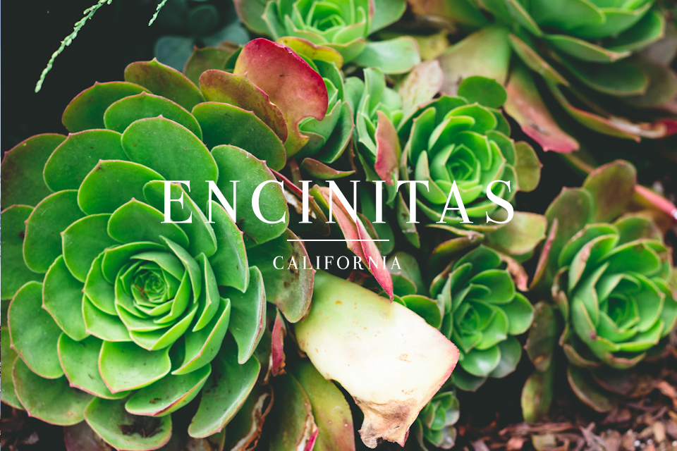 encinitas-sandiego-26.png