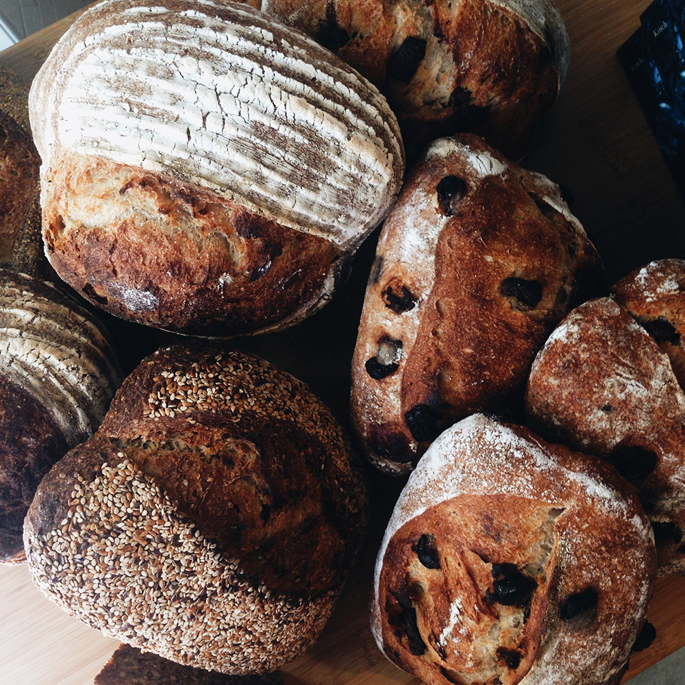 Manresa Bread Project | Santa Cruz, CA