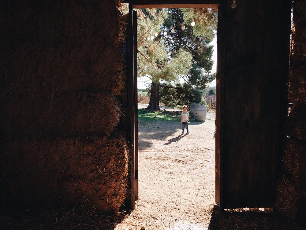 Rancho El Mogor, Valle de Guadalupe