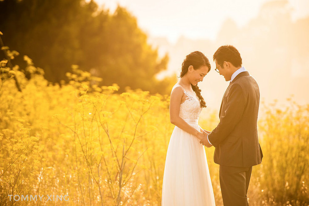 San Francisco per-wedding 旧金山婚纱照 by Tommy Xing Photography 27.jpg