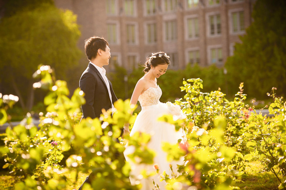 university of washington pre wedding 西雅图华大婚纱照