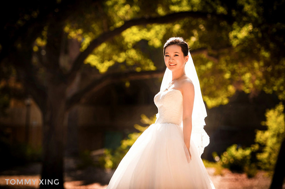 San Francisco bay area pre wedding - 旧金山湾区婚纱照 - Tommy Xing09.jpg