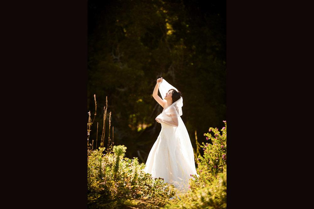 旧金山艺术宫婚纱照 palace of fine arts pre wedding
