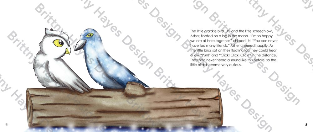 The Shy Barn Owl Final Watermark_Page_03.jpg