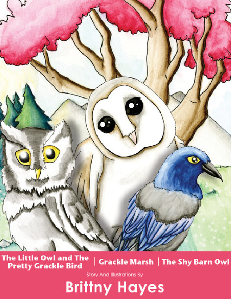 Books - Three children's books I wrote and illustrated. Each story teaches children about values and morals through the adventures of two birds named Asher and Uri.
