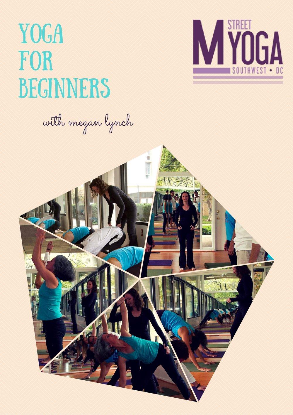 msy beginners series