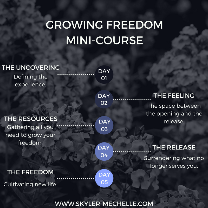 GROWING FREEDOMMINI-COURSE.png