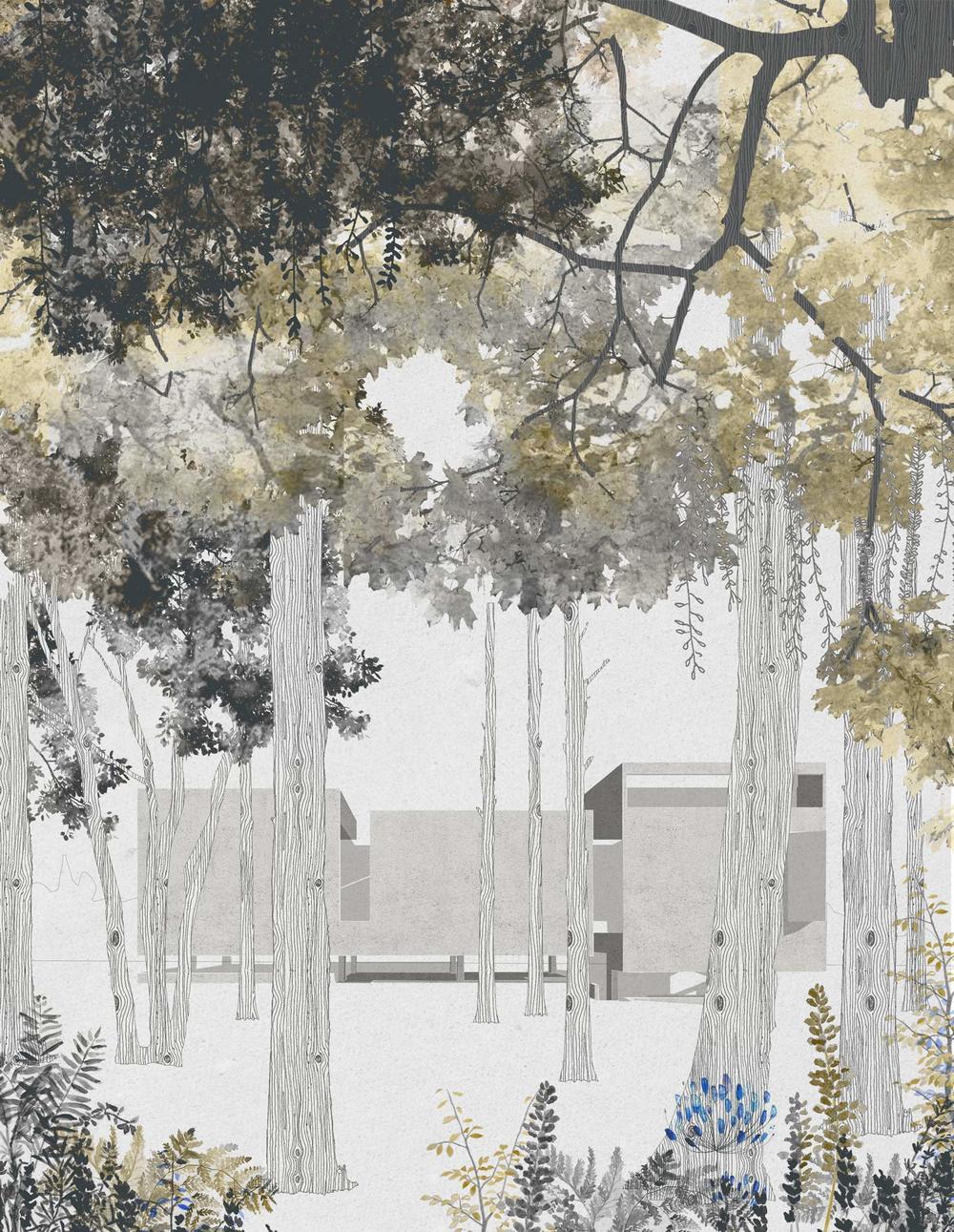 juan-soriano-cultural-centre-garden-2.jpg